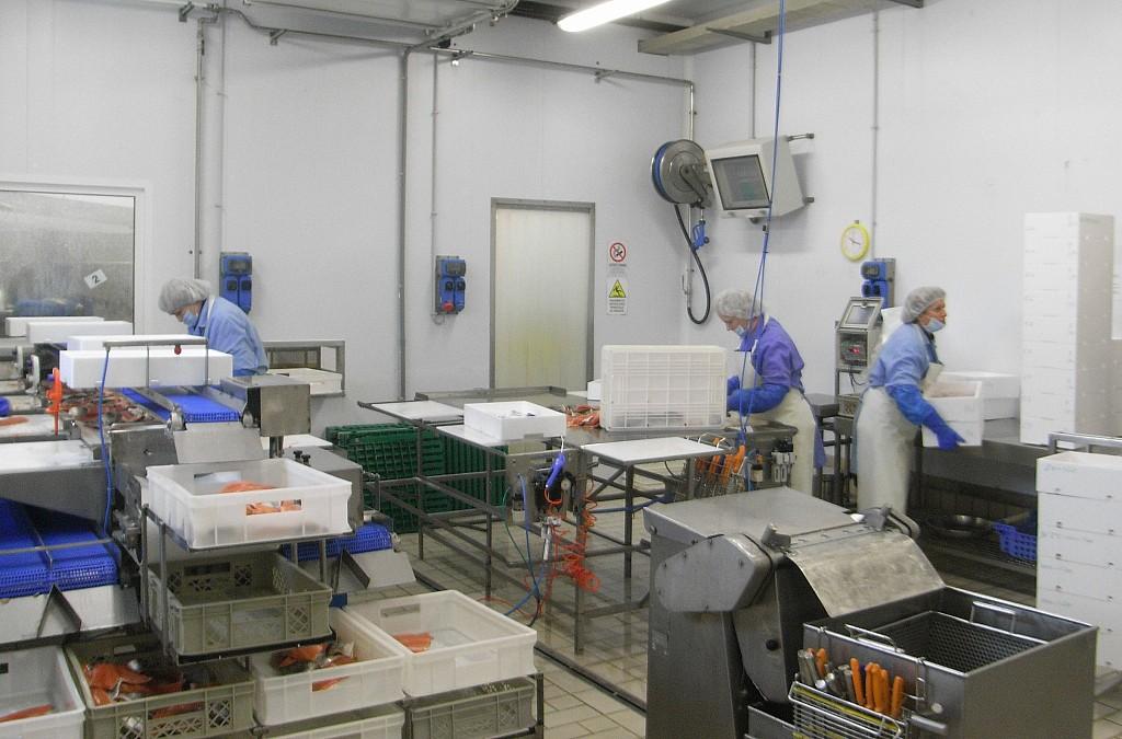 Enrolladores de manguera para la industria alimentaria - Enrolladores de manguera ...